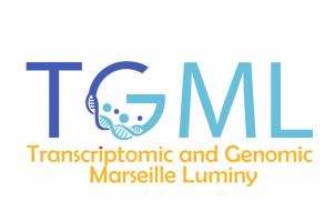 Logo TGML